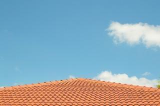DIY Roof Inspection of your new home.