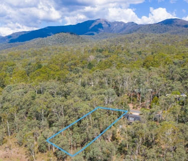 DREAMING OF A HOME AMONGST THE GUM TREES?
