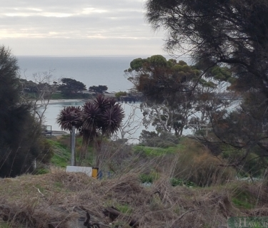 Inspiring views on Wright Road