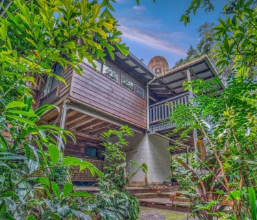 NESTLED IN THE WORLD HERITAGE RAINFOREST... WELCOME TO THE JUNGLE!