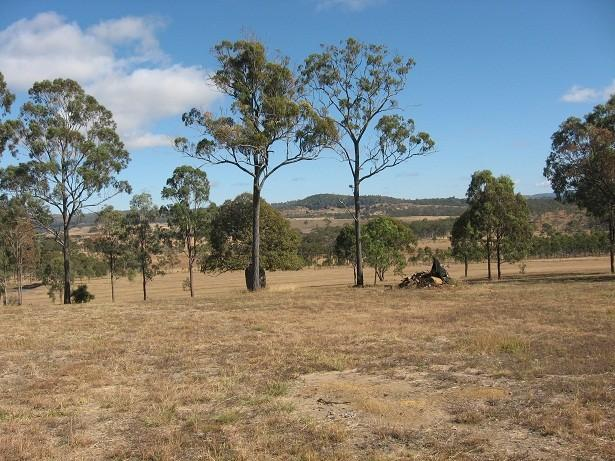 FLAT 50 ACRES - HIGHWAY FRONTAGE - CLOSE TO TOWN