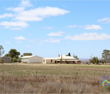 Rural Lifestyle block on 21 acres