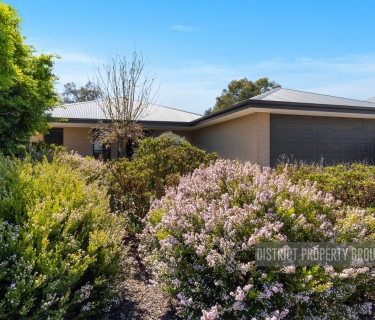 GREAT HOME! GREAT SHED! GREAT LOCATION!!!!